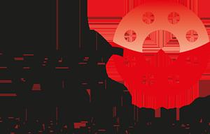 Studio29elf | Responsive website laten maken net zoals VCC BV? Neem contact met op!